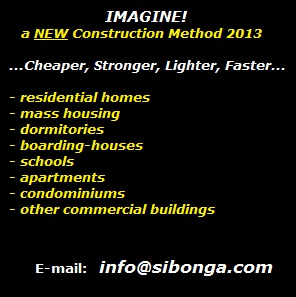 Low cost housing solutions philippine construction for Low cost housing solutions