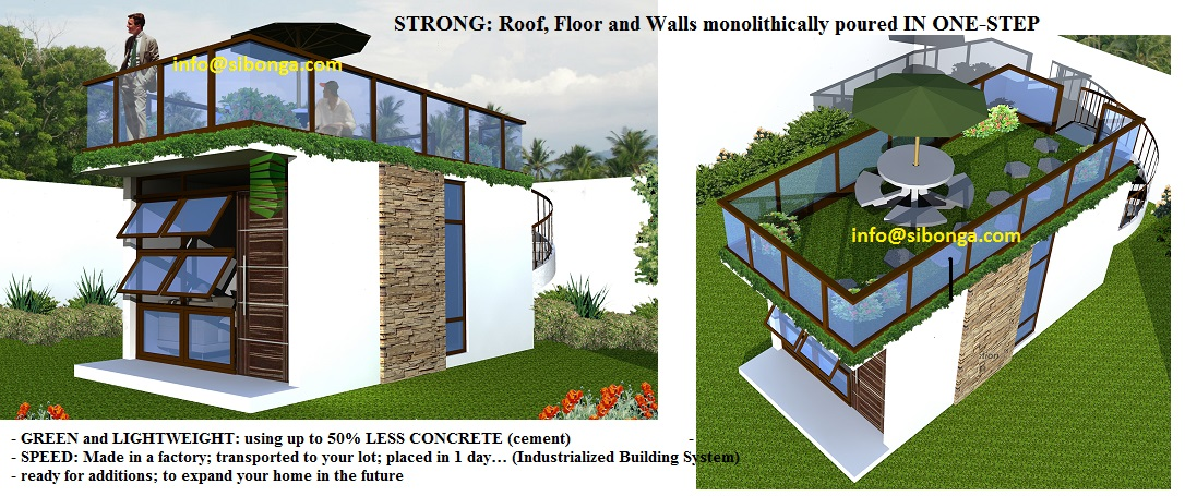 Philippines the green grass roof building design for Homes plus designers builders inc